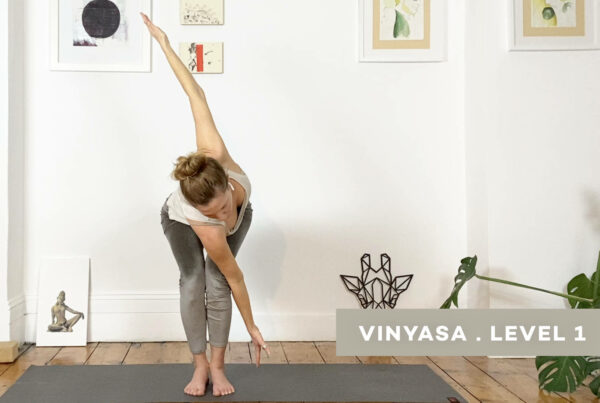 Twist and flow – including twisted arm balances and inversions