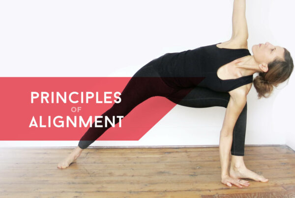Principles of alignment course