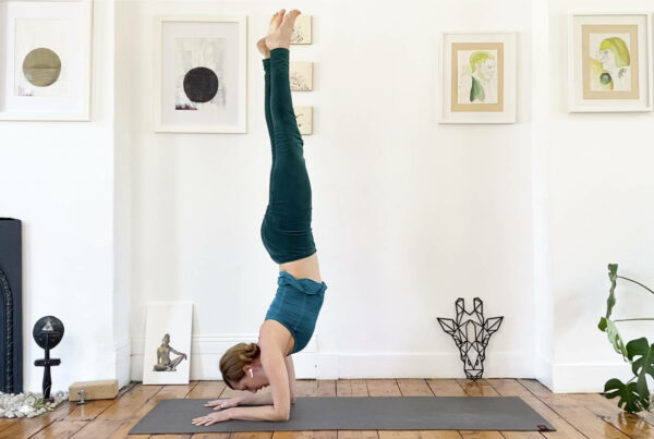 Ankles and forearms – a journey towards forearm balance
